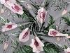 Bavlněná látka květy, rostliny