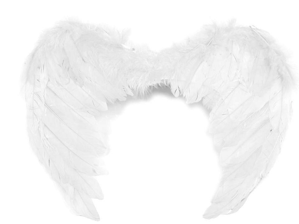 Andělská křídla 35x45 cm 1 ks