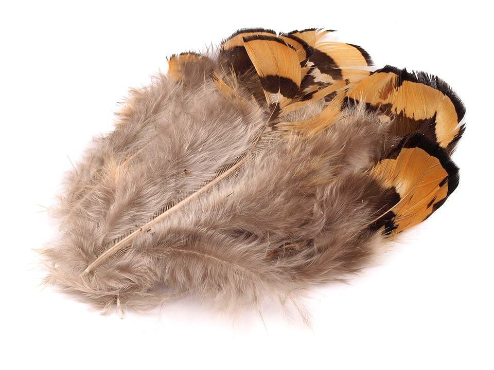 Bažantí peří délka 4-9 cm 10 ks