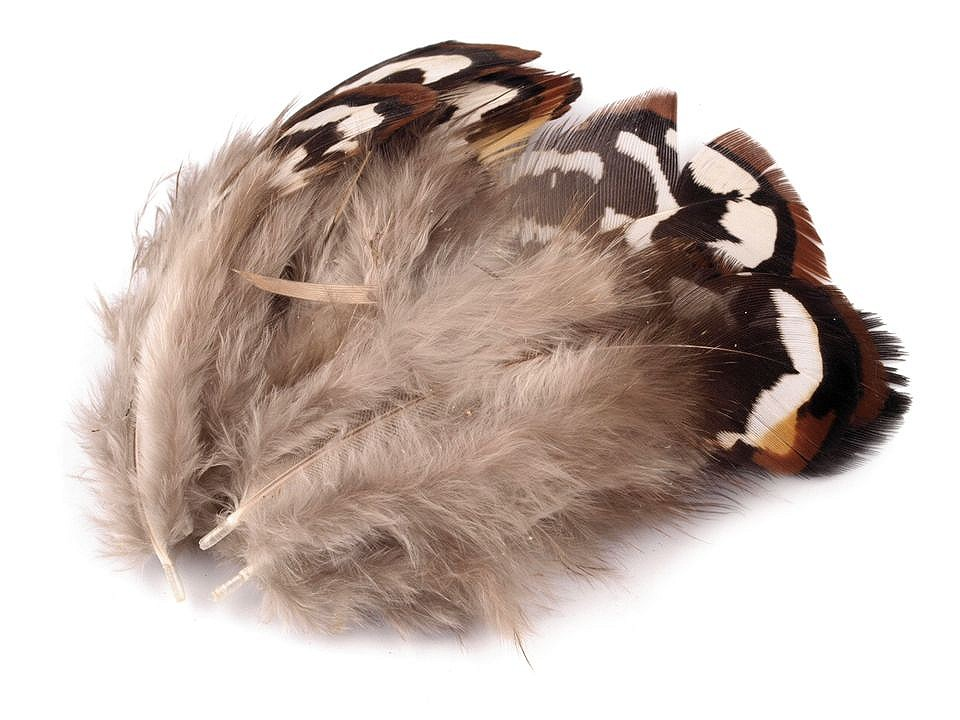 Bažantí peří délka 5,5-12 cm 10 ks