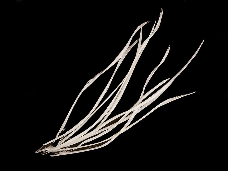 Husí peří - osten / brka délka 15-23 cm 1 ks