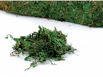 Decorative Moss 640 g