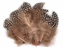 Hennenfedern Länge 8-13 cm