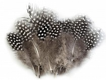 Decorative Hen Feathers length 8-13 cm