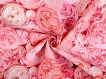 Dekorační látka Loneta růže