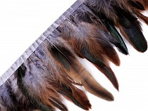 Feather Trimming - Rooster Feathers width 15 - 19 cm