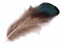 Ornamental Pheasant Feather length 4.5-9 cm