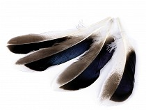 Duck Feathers length 10-14 cm