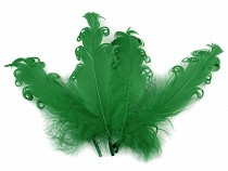 Curly Goose Feathers length 12-18 cm