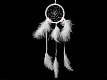 Dreamcatcher with Pom Poms and Feathers