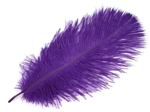 Pštrosí peří délka cca 20-25 cm