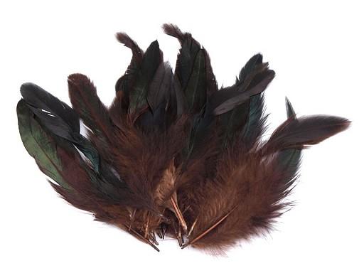 Slepičí peří délka 6-15 cm