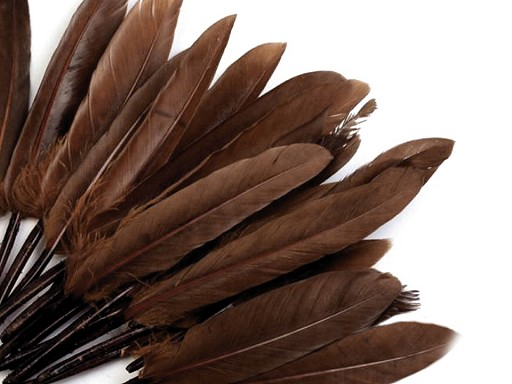 Kachní peří délka  9-14 cm
