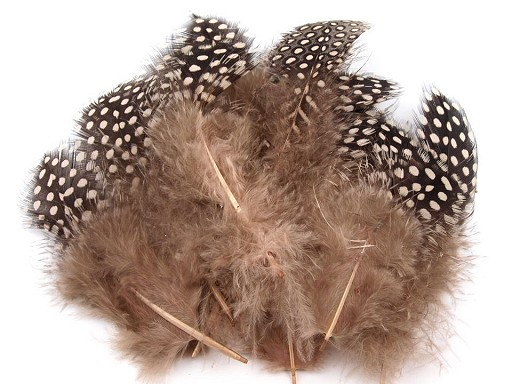 Slepičí peří délka 8-13 cm