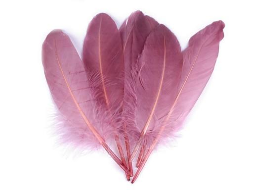 Husacie perie dĺžka 15-21 cm