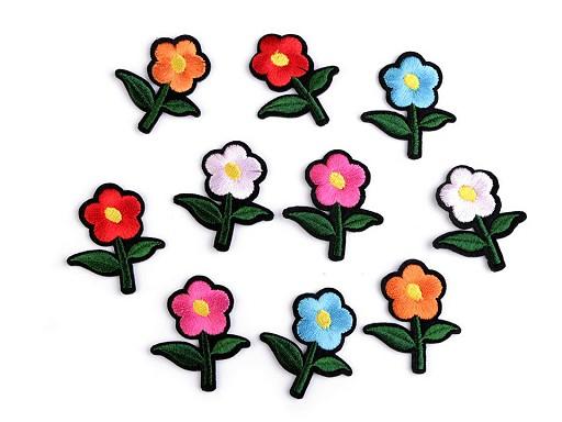 Nažehlovačka květ