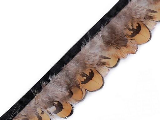 Prámik bažantie perie šírka 55 mm