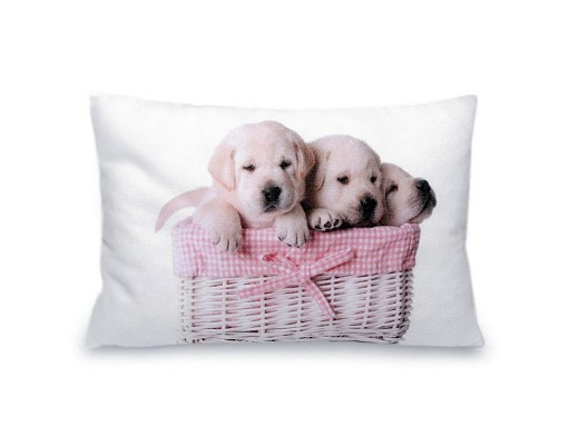 Malý dekorační polštář s výplní - kočka, pes 20x30 cm
