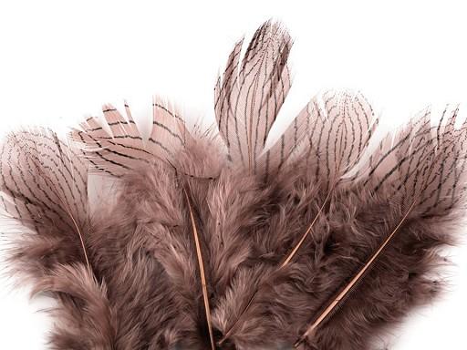 Bažantí peří délka 5 - 11 cm
