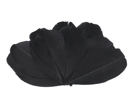 Husie perie dĺžka 5,5-7 cm