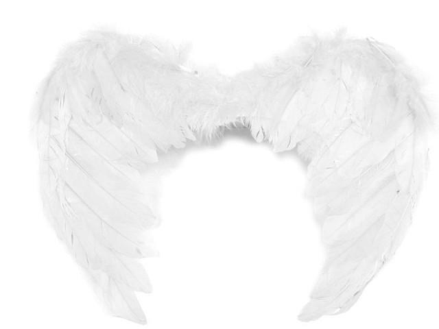Andělská křídla 35x45 cm