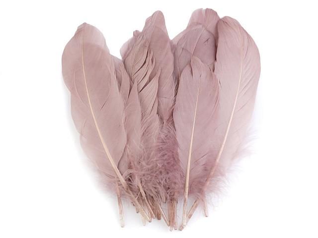 Husí peří délka 15-21 cm