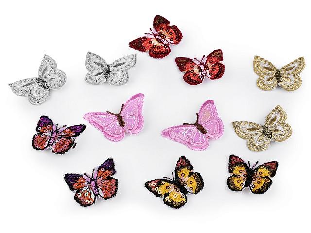 Motýl s klipem