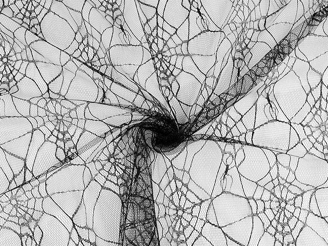Tüll Spinnennetz