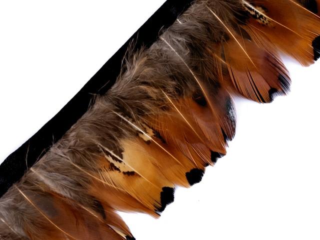 Prámik - bažantie perie šírka 40-60 mm
