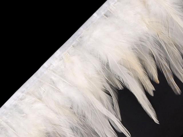 Prámik - kohútie perie šírka 12 cm