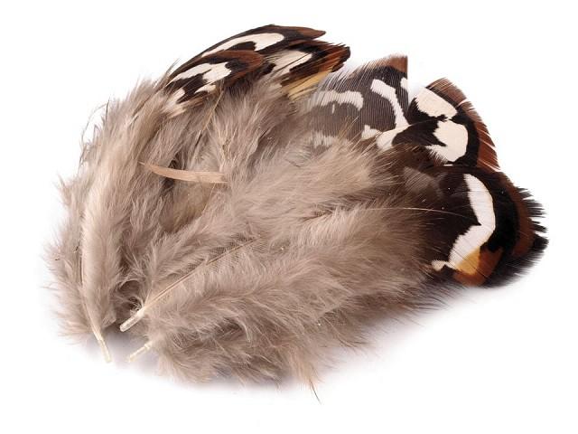 Pene decorative fazan, lungime 5,5-12 cm