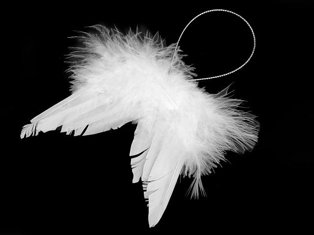Dekorácia anjelské krídla malé