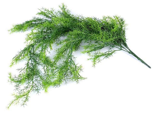 Umelý asparágus na aranžovanie previslý